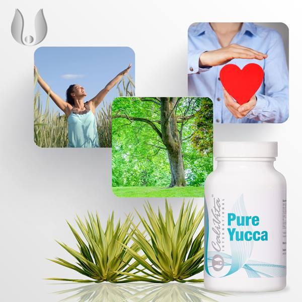 Pure Yucca Calivita flacon cu 100 capsule
